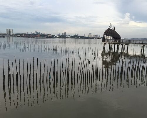 straits-of-johor-nature-reserve-prawn-farming